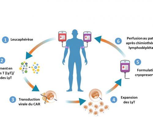 CAR-T cells : une révolution amenée à durer ?
